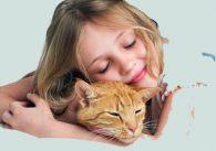 О пользе общения с домашними животными
