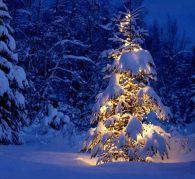 Вот приходит Новый Год! Кто его для нас несет?